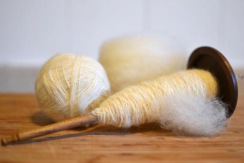 Llama and wool