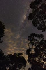 [フリー画像素材] 自然風景, 空, 夜空, 星, 天の川・銀河系, 風景 - オーストラリア ID:201205301600