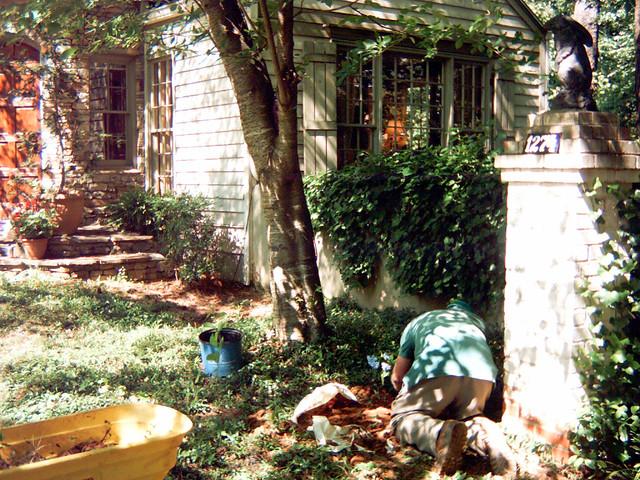 WSPC0904-2012-05-19-Planting-Hydrangea