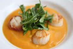 Seared Scallops with Sweet Potato Veloute and Rocket Salad