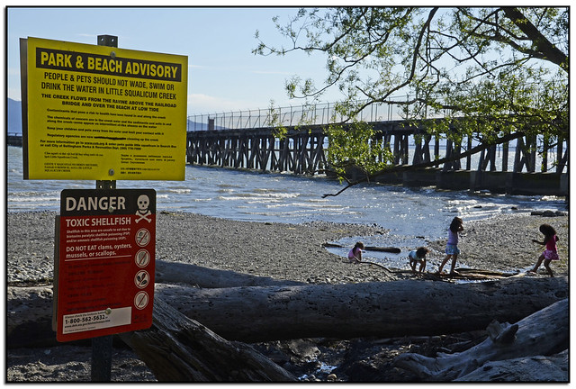 Sign warns people and pets about wading, swimming, drinking this water, Bellingham, Washington by telllytomtelly on Flickr for State of the Environment