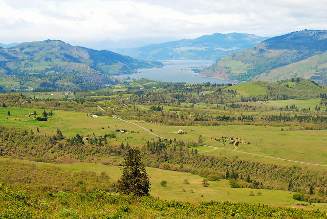 View from Tom McCall Preserve - Eastern Columbia River Gorge