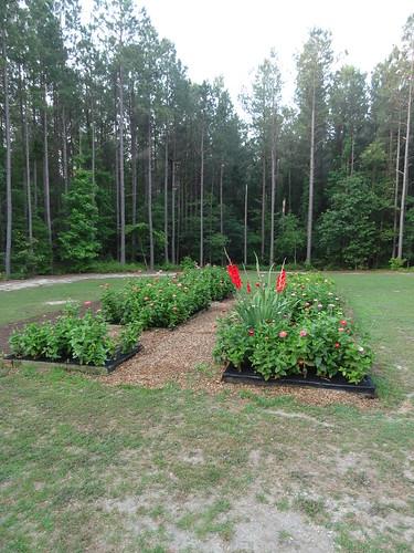 JRC Garden June 2012 (5)