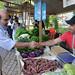 Rio+20: Rio Slow Food Market