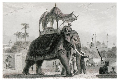 017-Un elefange enjaezado-The oriental annual, or scenes in India 1835-1840- William Daniell-© Universitätsbibliothek Heidelberg