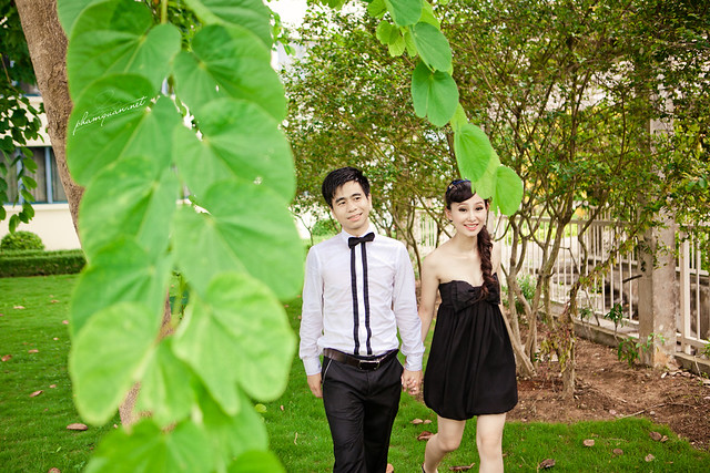 Wedding : Tình Phương