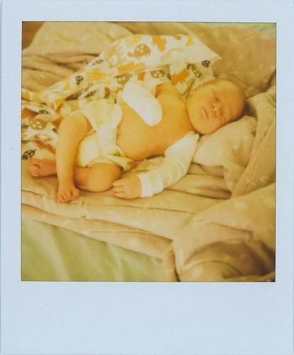 cedar, 2 days old
