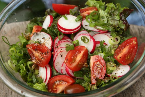 Green Leaf Salad with Radish, Tomato, and Green Onion