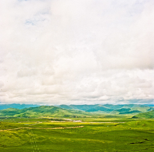 Cloudy Grassland @ Amdo