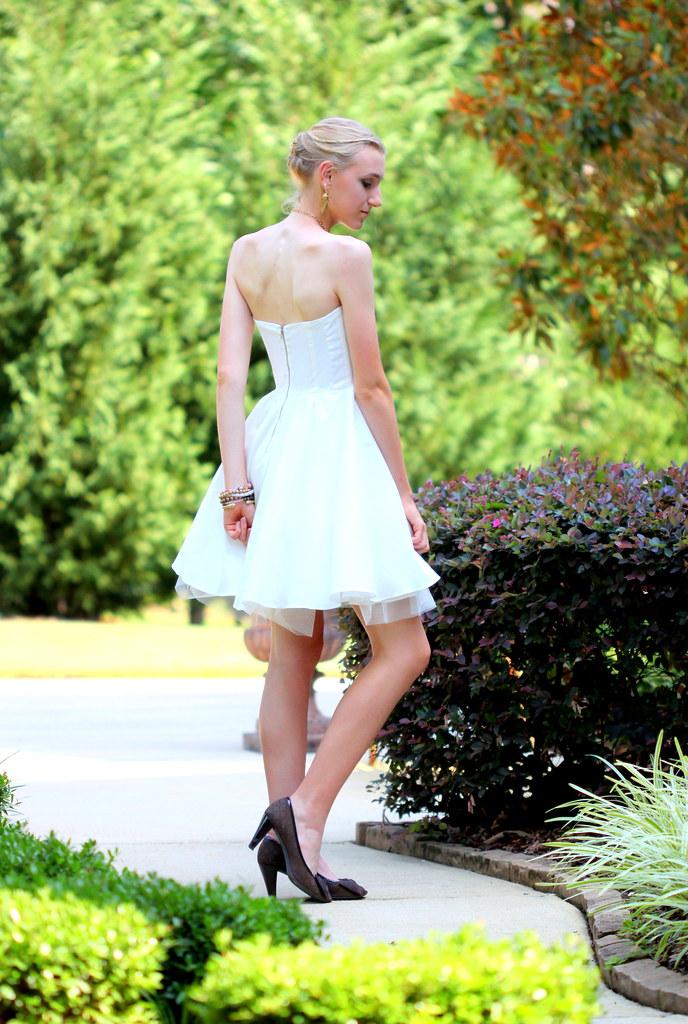 Swan Princess1