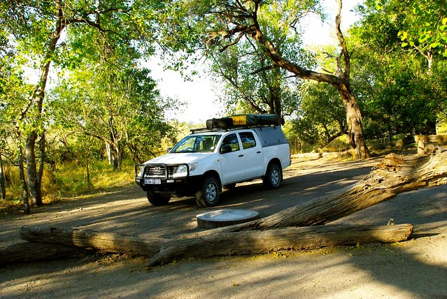 essay on african safari Let tanzania-experience organize your safari in tanzania  on our trips you will also learn more about the different cultures and tribes found in east africa such .