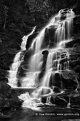 Sylvia Falls, Valley of the Waters Creek, Blue Mountains National Park, New South Wales (NSW), Australia