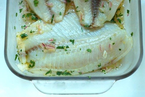 Marinating the tilapia fillets by Eve Fox, Garden of Eating blog, copyright 2012