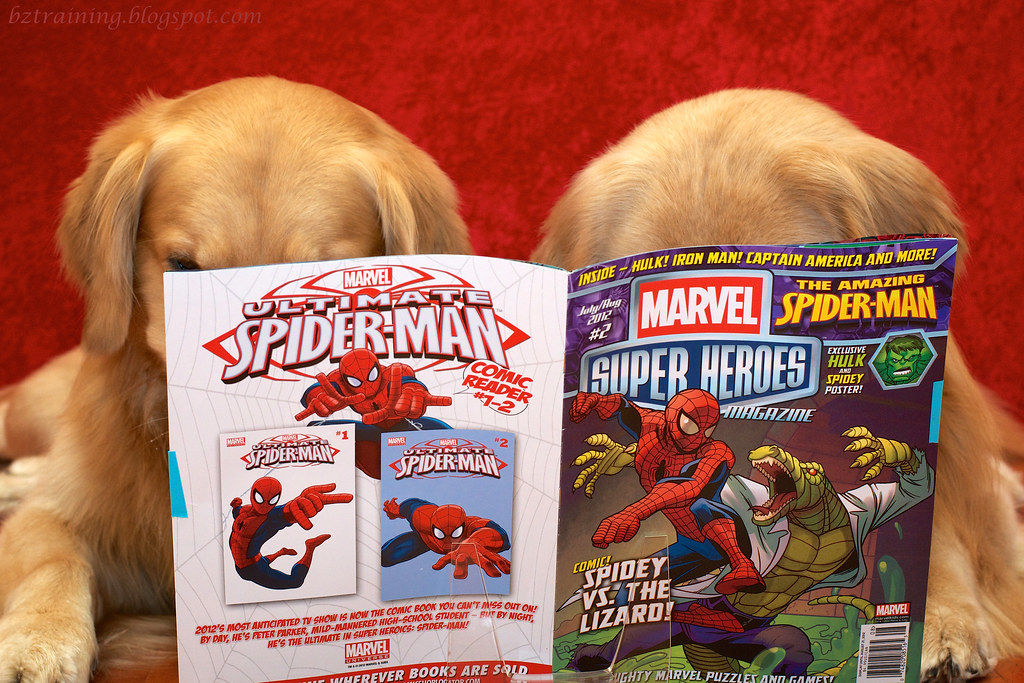 Dogs and Comic Book