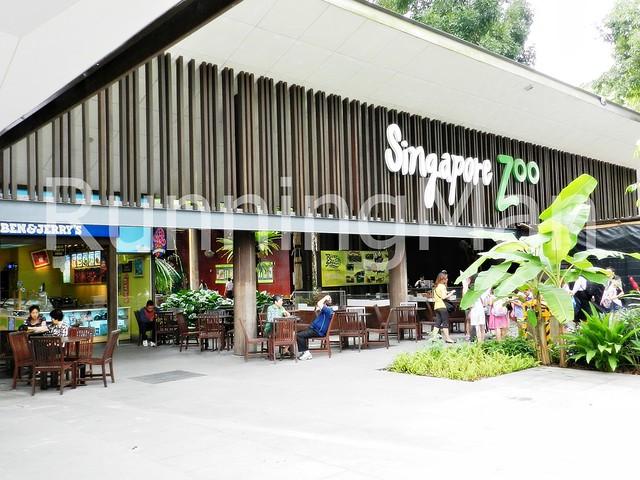 Singapore Zoo 01