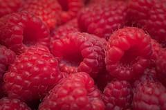 blackberry(0.0), tayberry(0.0), shrub(0.0), flower(0.0), plant(0.0), zante currant(0.0), boysenberry(0.0), berry(1.0), wine raspberry(1.0), frutti di bosco(1.0), produce(1.0), loganberry(1.0), fruit(1.0), food(1.0), raspberry(1.0),