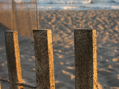 Beach Fence, by George Alger