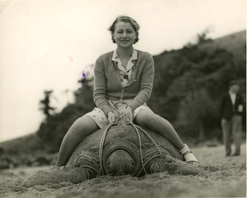 Young woman sitting astride a turtle