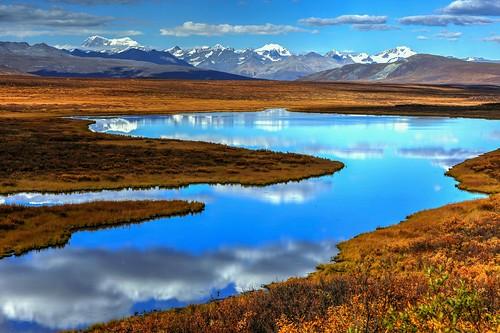 Denali Highway Autumn Reflections