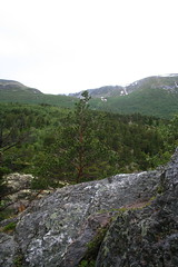 A view along the footpath to the Mågålaupet.