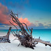 North Beach Heron Island by Bruce_Hood
