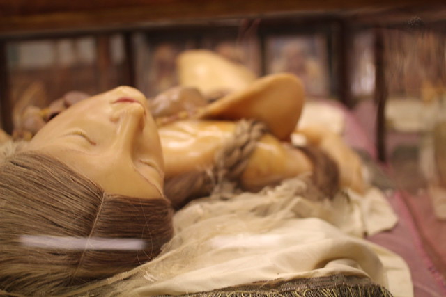 Wax medical models from the 1800s