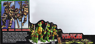 "NECA TEENAGE MUTANT NINJA TURTLES :: ""LEONARDO""  Tube Pack insert i (( 2008 ))"