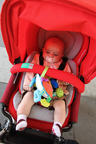 Orbit Car Seat Safety Reviews