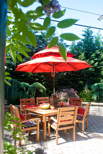 Luxury When I spotted this spice colored pagoda umbrella I stopped dead in my tracks because it was just perfect for the patio and Japanese inspired garden we