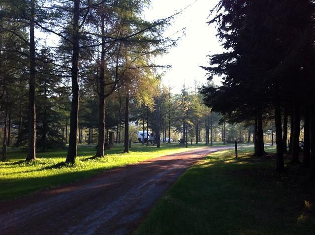Campsite at De La Republique Park