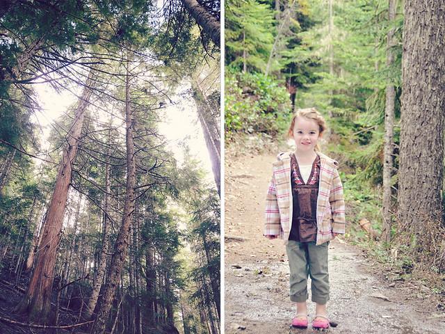 aubri:trees