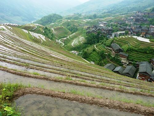 C-Guangxi-Pingan-Terrasse des 9 dragons (24)