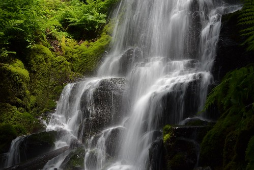 Falling Waters by Jim