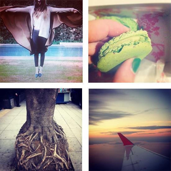 eleph_instagram
