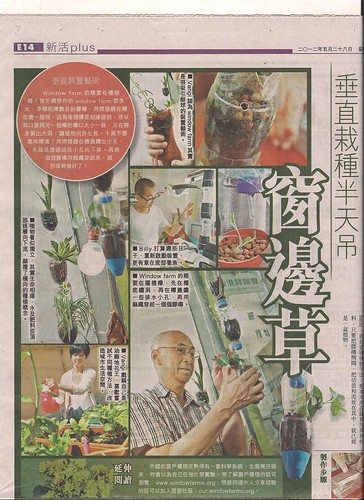 28/5/2012 蘋果 Apple Daily <副刊> - 垂直栽種半天吊