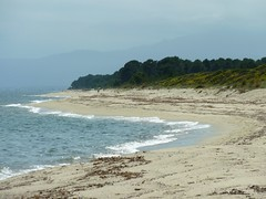 Arrivée à la plage vers Foce de Fierascuti