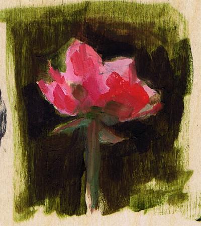 roseroserose-web