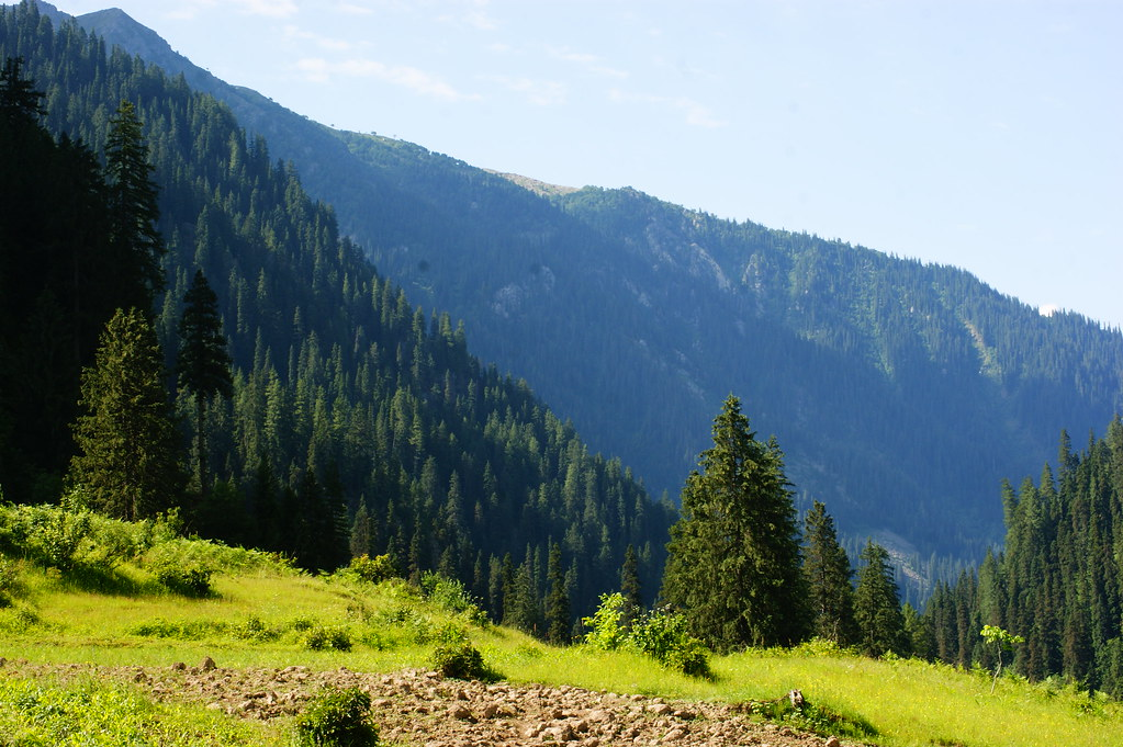"""MJC Summer 2012 Excursion to Neelum Valley with the great """"LIBRA"""" and Co - 7607840598 dc23c8d441 b"""