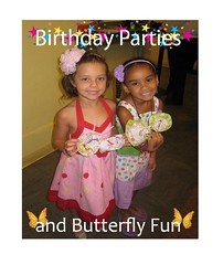 Birthday Butterfly Party