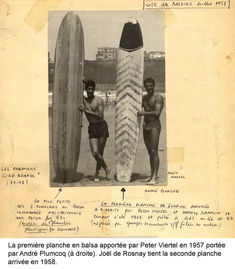 Les origines du Surf