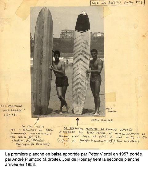 Les origines du Surf