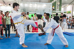 taekwondo(0.0), striking combat sports(1.0), hapkido(1.0), individual sports(1.0), contact sport(1.0), sports(1.0), tang soo do(1.0), combat sport(1.0), martial arts(1.0), karate(1.0), taekkyeon(1.0),