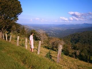 Sellin Road, Mount Mee
