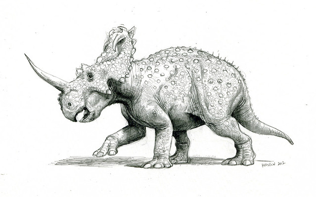 Pics For > Dinosaur Drawings In Pencil