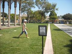 LACMA Grass
