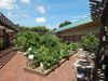 Whole Garden August 19