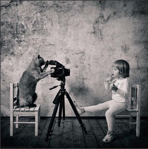 cat and little girl via dree harper