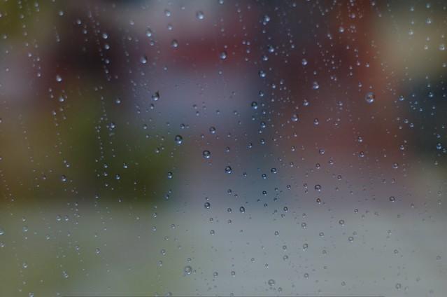 124/366: Lluvia a cántaros