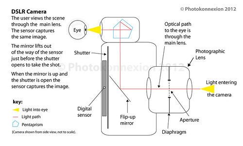 Diagram showing the idealised route of light through a DSLR camera