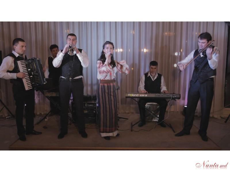 """Formația """"Unique Band"""" - muzică pentru nunți și petreceri > Foto din galeria `Despre companie`"""